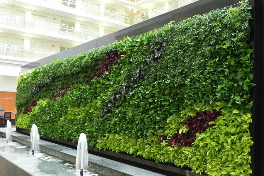 Soluciones verdes muro verde for Diseno de muros verdes